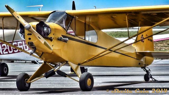 1946 Piper Cub